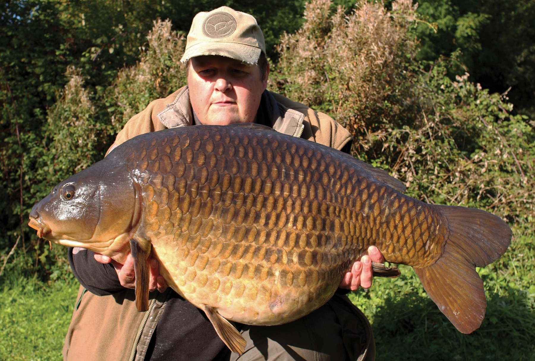 A 43lb common from more recent times