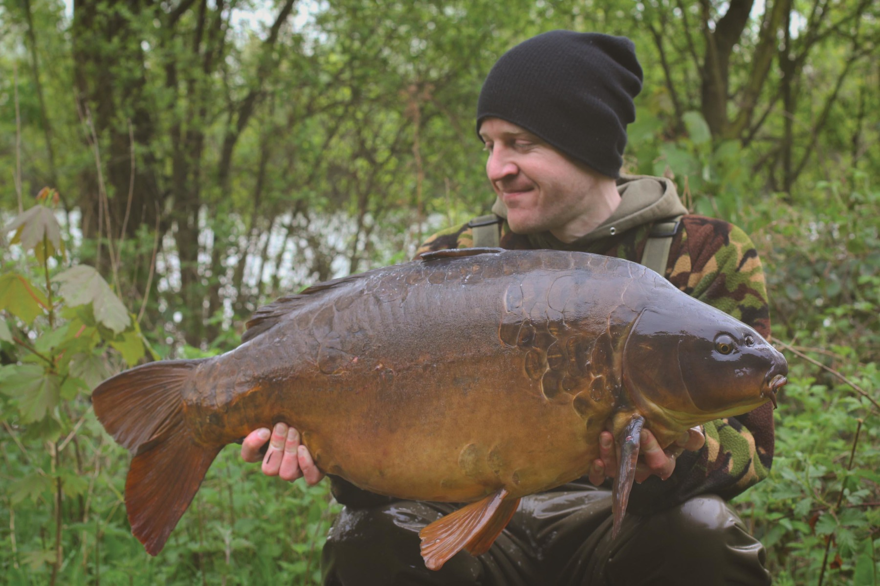 The Soft Hinge, much like the original Hinged Stiff Rig, proved successful in singling out the better fish but I still felt it lacked the overall effectiveness of the 360º. A stunning carp called Cluster from Pingewood
