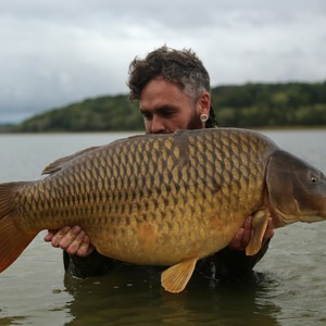 A chunky 42lb common from a big French ressie