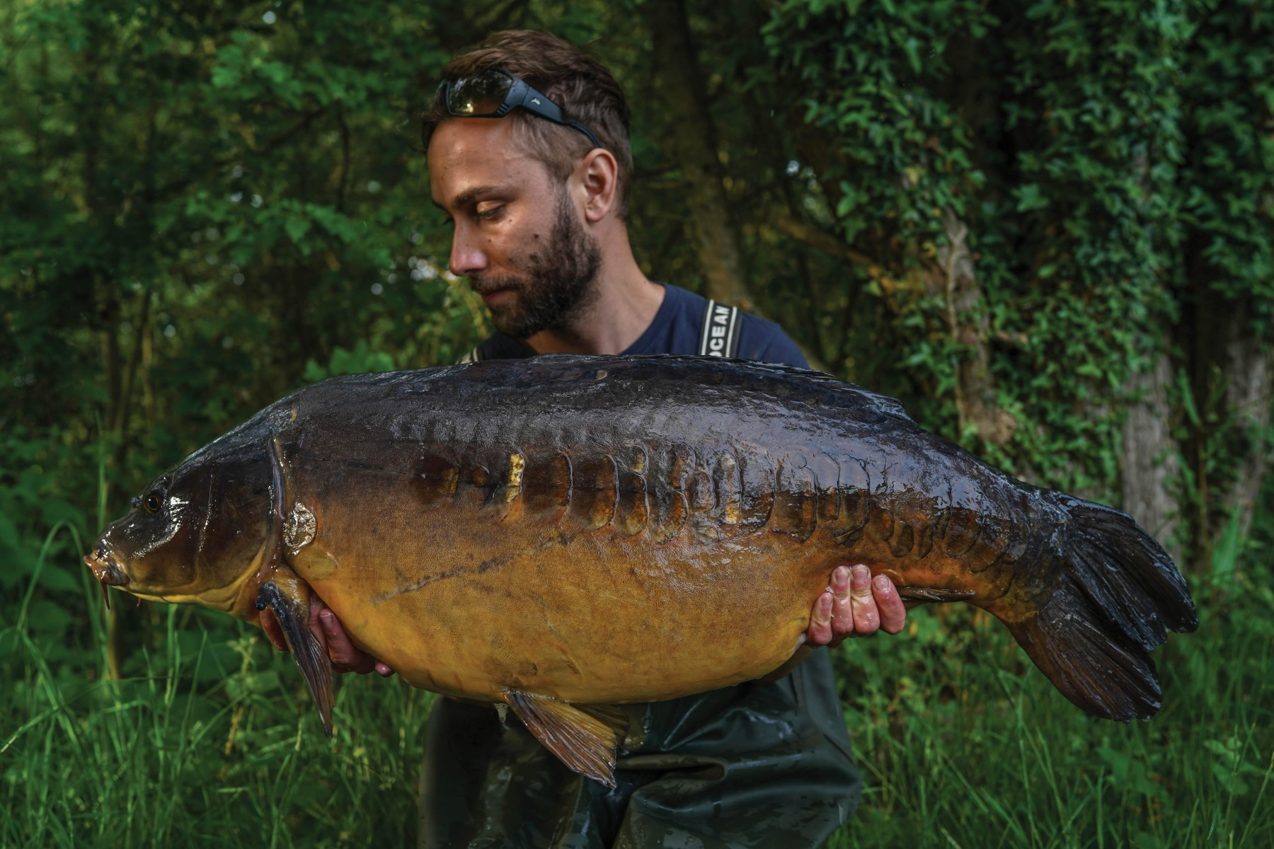 An awesome Half-Lin from the spring that took a liking to a washed-out hookbait on the Hinge