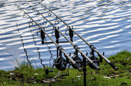 Carp Spirit Magnum XLR & X5 Rods Review