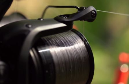 Daiwa 19 Emblem 45 SCW QD Reel Review